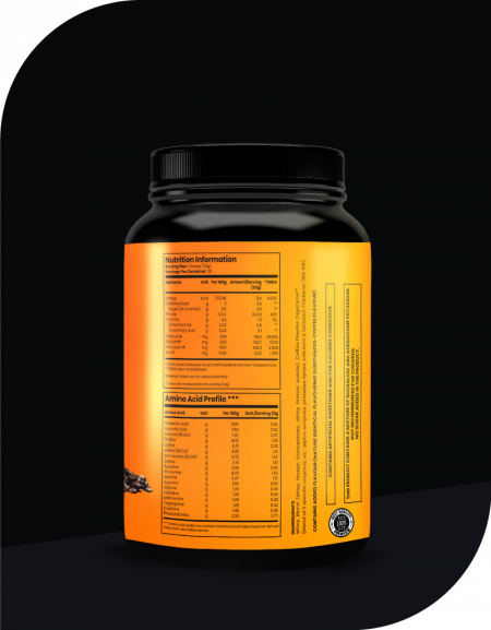WHEY PROTEIN WITH DIGEZYME 24GM PROTEIN